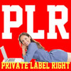 Thumbnail 200 over PLR Articles on Art and Design Private Label Rights
